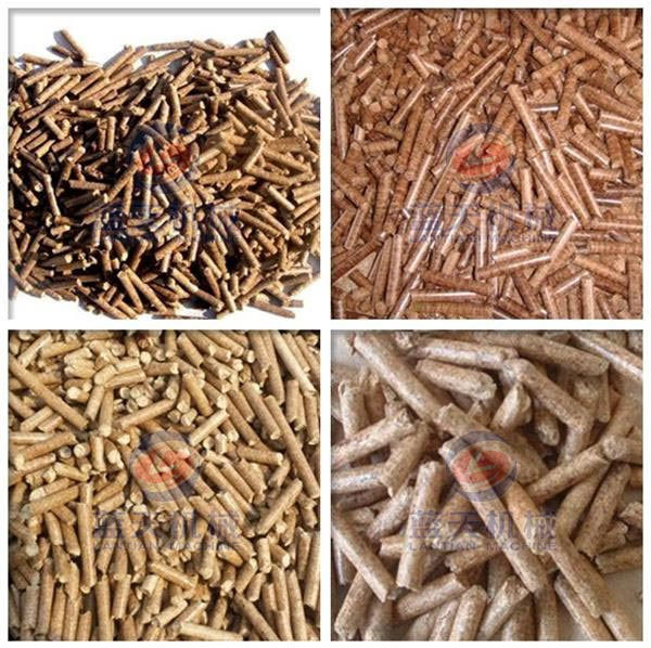 Finished Product of Bagasse Pellet Machine